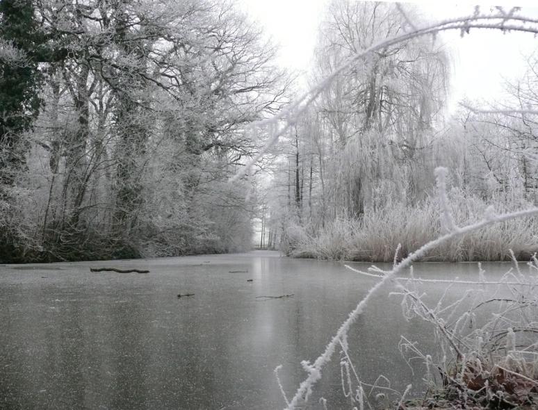 winterd5