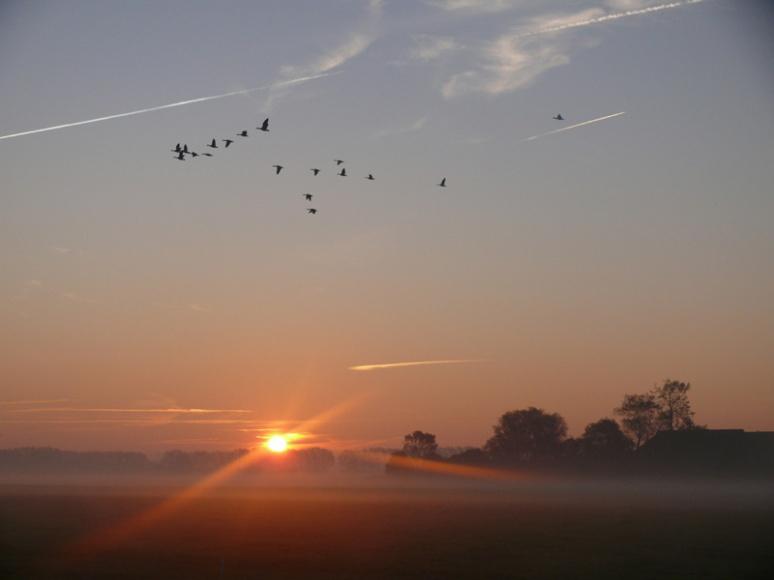 ochtenstond-bij-hoeksmeer-oktober-10