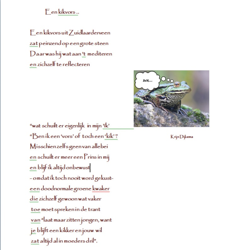 Schermopname (65)kopie